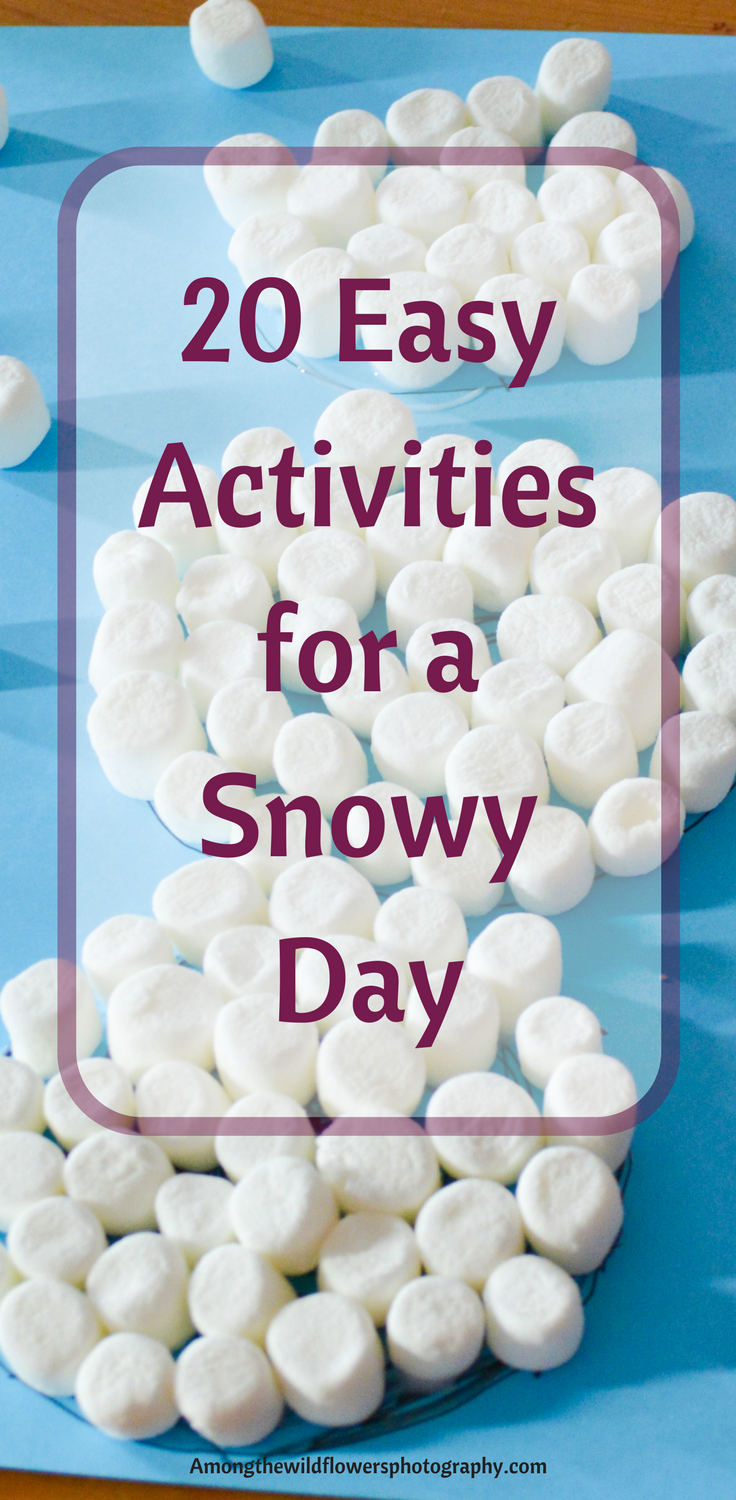Easy Activities for a Snowy Day